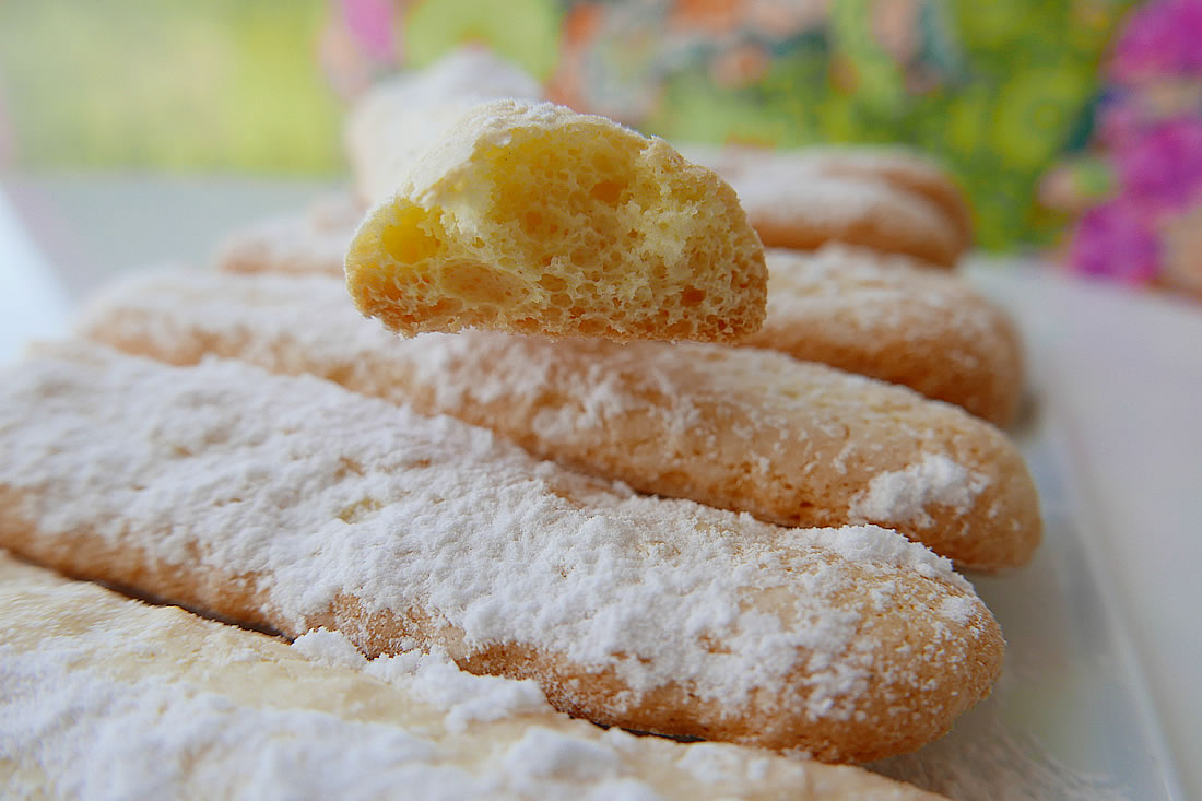 Sponge 'boudoir' biscuits - Ladyfingers