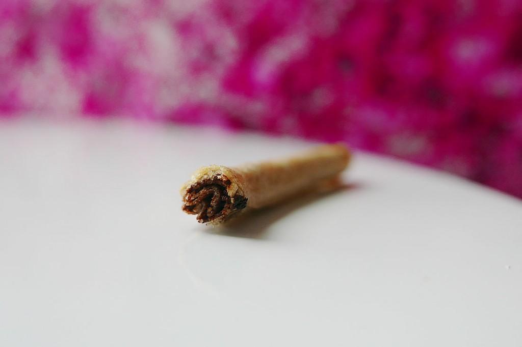 spring roll nutella7