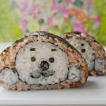 Creative Sushi Roll – Seal