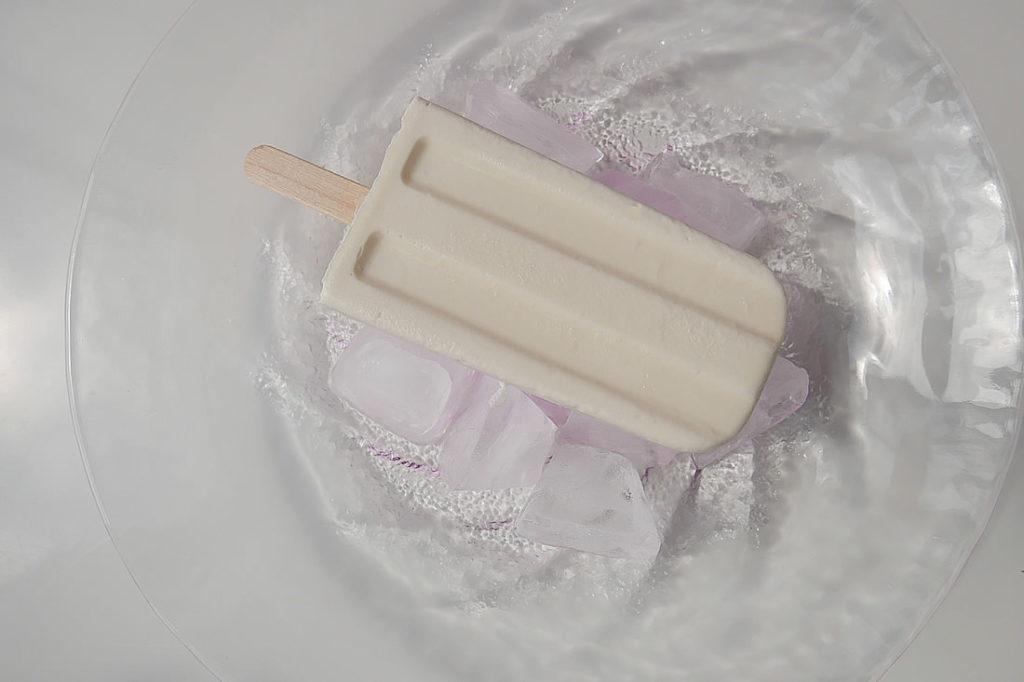 vanilla ice8